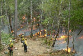 Crawford Fire - 2001
