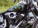 Dragonlady Bike