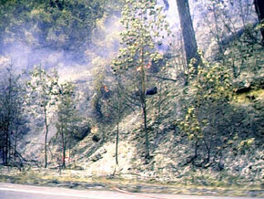Fire on Indian Creek Road